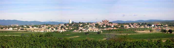Typische Landschaft in  Languedoc-Roussilon